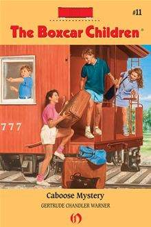 Hardy Boys #17: The Secret Warning