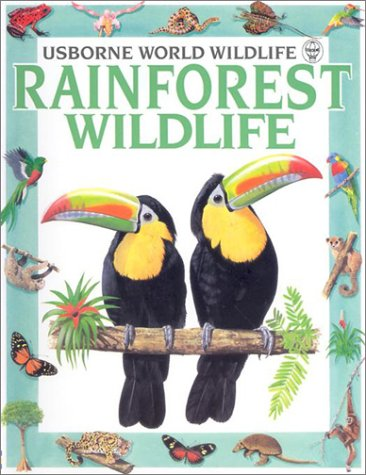 Rainforest Wildlife